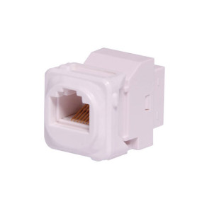 CAT6 RJ45 Back to Back Wall Plate Insert